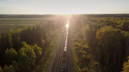 goederentrein : fantastic aerial view freight train drives through autumn birch forest and setting sun shines on moving cisterns