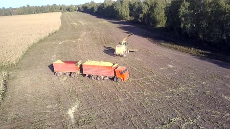 nakládané : aerial panorama corn combine and loaded truck with trailer turn around on harvested field near trees on bright sunny day Dostupné videozáznamy
