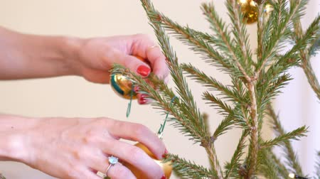 сферический : slow motion close view girl hands with modern manicure hang shining gold ball on Christmas fir tree branch Стоковые видеозаписи