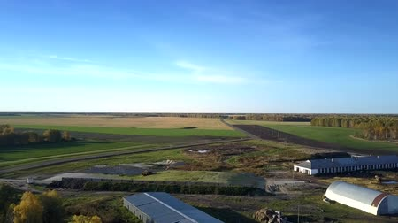 colhida : beautiful bird eye flight over livestock complex with operating machinery among harvested fields under blue sky Stock Footage