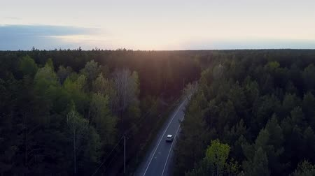 еще : beautiful aerial view car drives along road through deep dark pine forest against light sky yet at late sunset