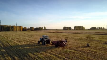 kolektor : side view tractor with rectangular baler pushing up straw bales make long shadows on field by forest under blue sky Dostupné videozáznamy