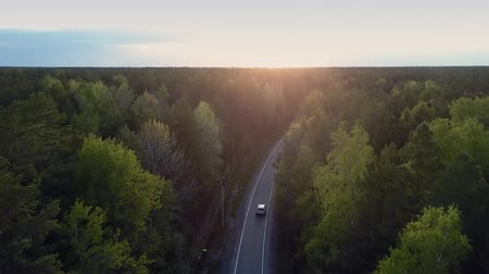 nazomer : inspiring panoramic view auto drives along road through deep pine forest against late sunset Stockvideo