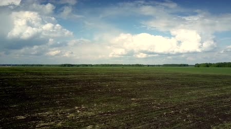 ground : aerial motion from vast plowed field with brown soil to green field with young wheat sprouts under cloudy sky Stock Footage