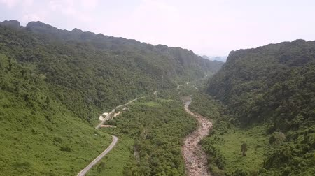 paralelo : mountain stream flows parallel to curving asphalt road among green dense jungle on tropical highland aerial view Vídeos