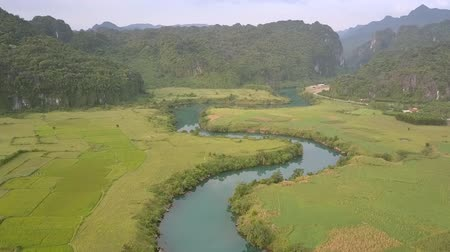 fıstık : exciting blue river reflects green trees between peanut fields against hills with dense forests upper view Stok Video
