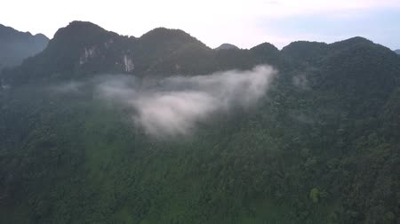 eye piece : aerial thick piece of fog is stuck in high mountain covered with green tropical trees and bushes bird eye view