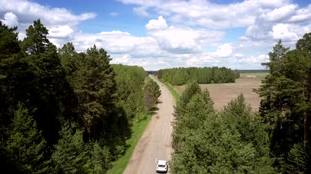 grey eyes : white sport utility vehicle drives fast along gray road near green dense forests and brown field bird eye view. Concept countryside and nature conservation Stock Footage