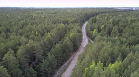 лесное хозяйство : sport utility vehicle drives along road surrounded by green dense forest from village on horizon aerial view. Concept abandoned road and freedom