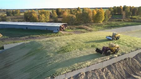 szektor : beautiful aerial view bulldozers tamp harvested silage on huge pit heap by hangar for machinery near trees on sunny day Stock mozgókép