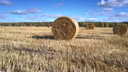 rotoballe : inspiring motion around large straw bale in boundless autumn field under blue sky with white clouds