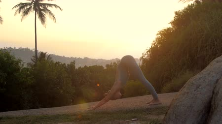 chakra : flexible girl shows sun salutation asanas at tropical wood against bright sunrise light side view slow motion. Concept fitness yoga wellness lifestyle