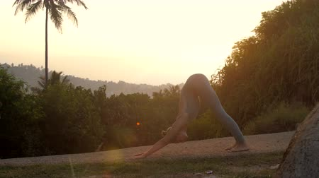 saudação : yoga practitioner does exercises of surya namascara complex on forest track in early morning side view slow motion. Concept fitness yoga wellness lifestyle Vídeos