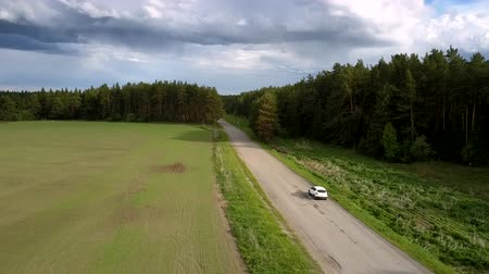 hasznosság : white sport utility vehicle drives along gray asphalt road by thick forest trees shadows in summer aerial view. Concept countryside and road destruction