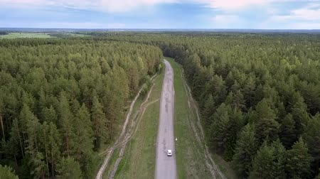 утилита : modern white vehicle drives along poor gray road among endless green dense forest in summer upper view. Concept abandoned road and rural hinterland Стоковые видеозаписи