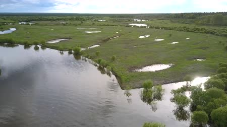 лесное хозяйство : wonderful river inundation after rain among green meadows with small lakes against distant forest on summer day upper view. Concept global warming