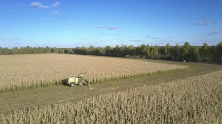 yem : upper view farmers get out of combine on harvested crop field against perfect natural landscape