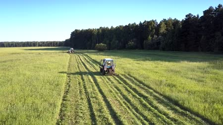 mow : close flight above tractor with mower cutting off thick green hay grass making rolls against forest on hot summer day