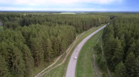 лесное хозяйство : white car drives along gray asphalt road between green dense forest on summer day aerial view. Concept abandoned road and rural hinterland