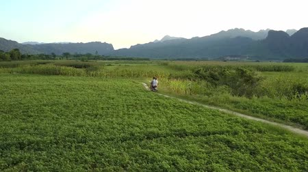 bum : bird eye view couple rides modern scooter along dirty road among green fields against large mountains