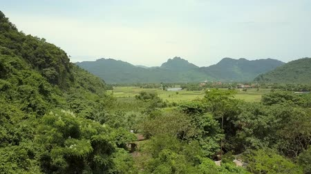 bird ecology : beautiful large old mountains covered with deep tropical forest in sunny spring morning bird eye view