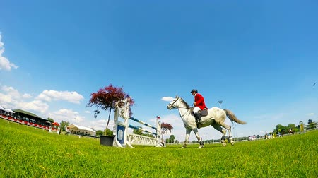 gösterileri : Rider on white horse in jump over a hurdle slow motion video Stok Video