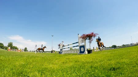 horse racing : Rider on brown horse in jump over a hurdle slow motion video