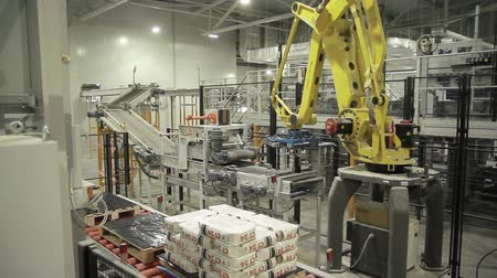 robots : Articulated robotic arm at packaging line in factory