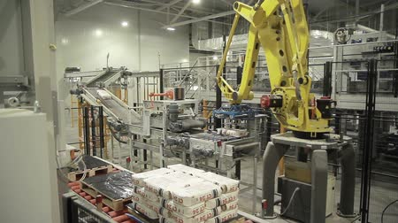 ремень : Articulated robotic arm at packaging line in factory