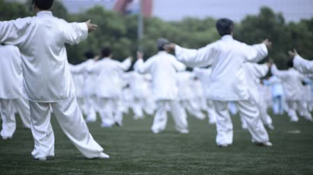 chi : People practice Taijiquan at the park Stock Footage