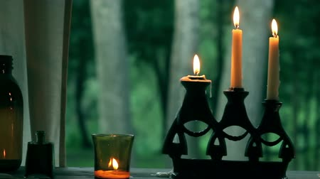 brazen : Vintage glass, candles, candelabrum pan. Old green and brown glass bottles. Green plants as a background.