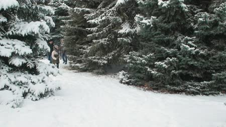 earmuff : Family rests in winter forest, beautiful landscape with snowy fir trees