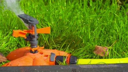 head over : Sprinkler head of automatic watering the bush, grass and lawn. Spraying water over green grass. Irrigation system Stock Footage