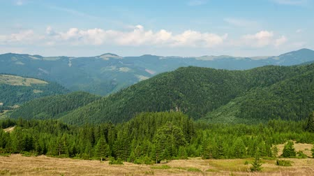 Timelapse of bright summer day in Carpathian mountains, panorama of Carpathians, blue sky, trees and green hills, beautiful view Стоковые видеозаписи