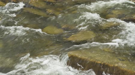 карпатская : Closeup view of beautiful mountain river in summer day, Black Cheremosh, Ukraine. Fast flowing water and rocks