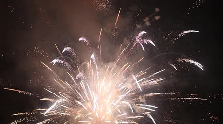 Exploding Fireworks In The Night Sky - Pyrotechnic Festival Stok Video