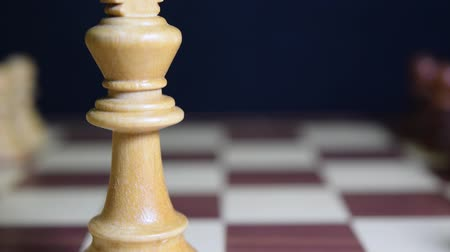 piskopos : King and pawn in the center of the chessboard in a challenging attitude