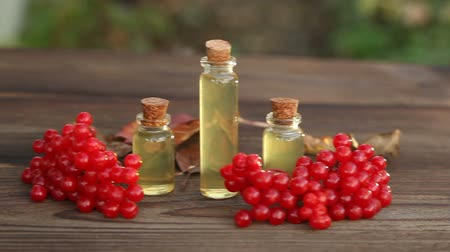 infusion of berries : Essence of Viburnum on a table in beautiful jar