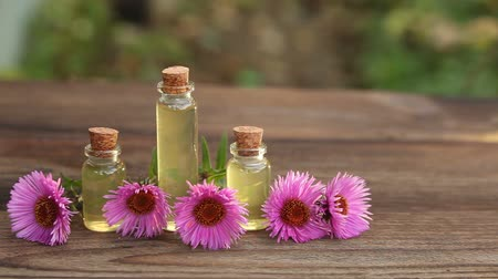aromaterapia : aster essential oil in a beautiful bottle on table Wideo