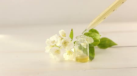 philadelphus blossoms : Essence of flowers on white background in beautiful glass jar