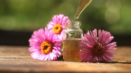 essência : aster essential oil in a beautiful bottle on table Stock Footage