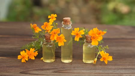 essence of flowers : marigold essential oil Stock Footage