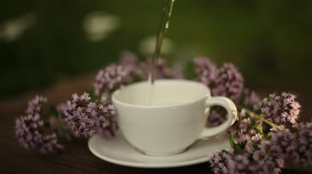 oregano : delicious oregano tea in a beautiful glass bowl on table Stock Footage