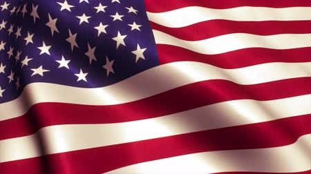 bandeira americana : USA American Flag. Seamless Looping Animation.
