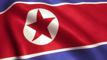 north korean flag : North Korea Flag. Seamless Looping Animation. 4K High Definition Video