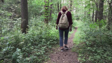 A young woman with a backpack is walking the path at the mystery forest. Wideo