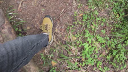 on nature : POV. A hiker walks the forest. The ground is covered with the autumn leaves.