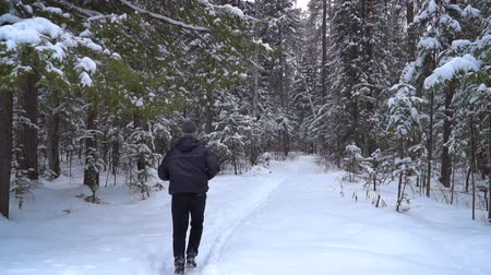 parky : The runner is surrounded by a spruce forest and deep snowdrifts. There is light snowfall.