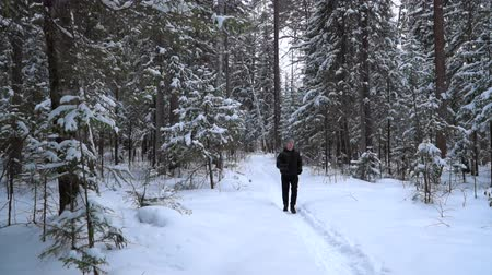 есть : The runner is surrounded by a spruce forest and deep snowdrifts. There is light snowfall.