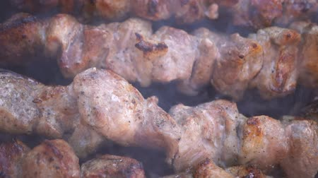 coals : Shish kebab from pork meat is prepared on skewers on coals. Roasted meat with crust. Tasty grilled food. Macro Shot. Slow motion.